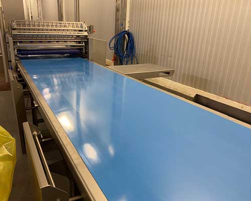 Blue Conveyor Belt